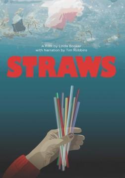 Poster strawsArt_LRG