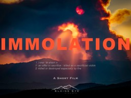 immolation-poster