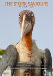 poster_the stork saviours